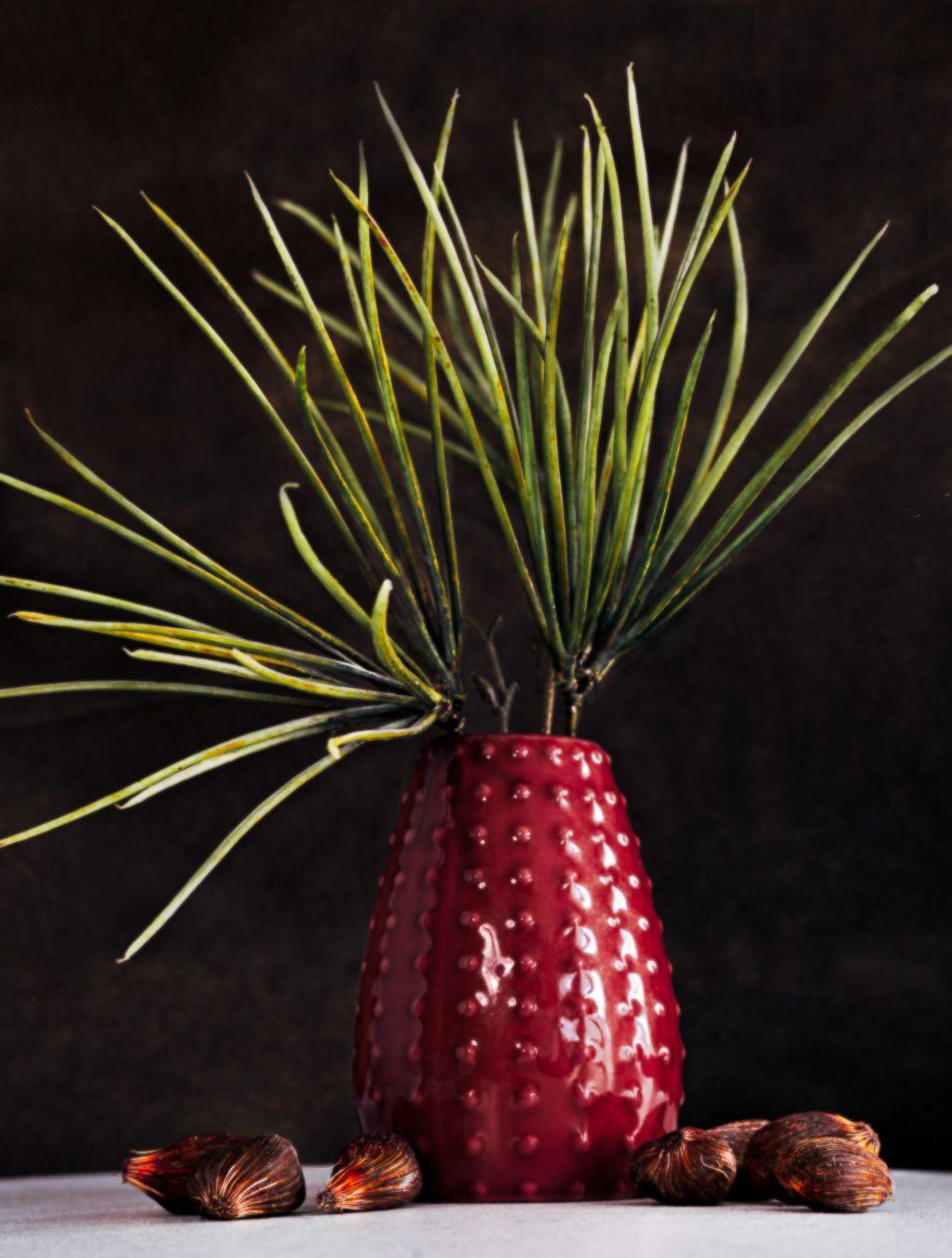 maningou huile palmiste gabon